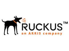 Ruckus-Networks_180